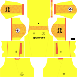 Everton FC DLS Goalkeeper Away Kit