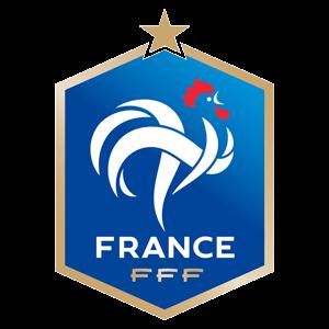 France Nike Team Logo