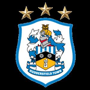 Huddersfield DLS Team Logo