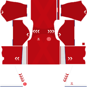 Denmark DLS Home Kit