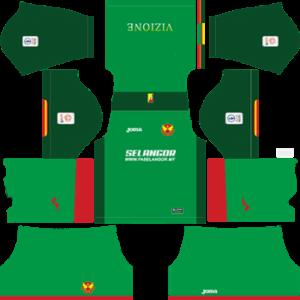 Selangor DLS Third Kit