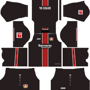 Bayer Leverkusen DLS Home Kit