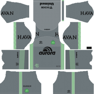 Chapecoense DLS Goal Keeper Away Kit