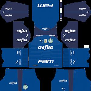 Palmeiras DLS Goal Keeper Home Kit