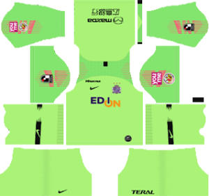 Sanfrecce Hiroshima DLS Goal Keeper Home Kit