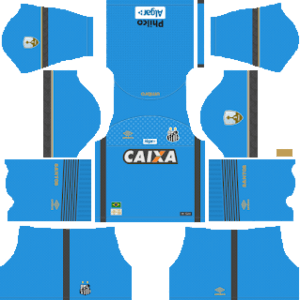Santos FC DLS Goal Keeper Home Kit
